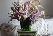 Flowers for Home Staging / Flowers are a great touch when decorating a house to sell