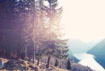 Landscapes! ♥