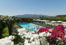 Vacation Villa Narcisa in Lucca, Tuscany
