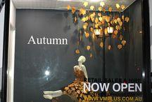 Autumn Window Display