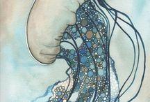 medůzy