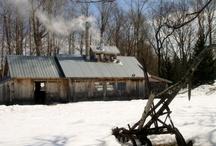 Spring Kingdom / Vermont's Northeast Kingdom in the spring.