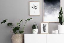 Gray + Plants