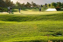 Golf / Everything golf / by JAllan