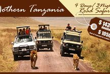 Tanzania Wildlife Safari Packages 2015 / The timeless plains stretch as far as the eye can see. Herds of animals roam as they did before humankind. Time seems to stand still in the wilds of #Tanzania, yet every day on this safari tour is thrilling and new. Join us for these Tanzania wildlife experiences