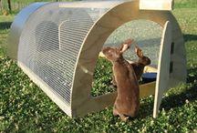 Rabbit hutch ideas