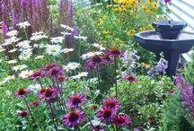 Blomster og trær i hagen