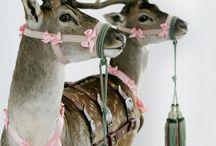 HO,HO, HO MY CHRISTMAS  BOARD / by Helena Ivancic