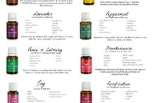 Young Living essential oils. Distributor #2257407 / by Jenna