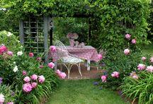 Aiken garden