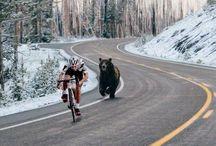 Fahrradfahren....motiviert