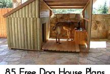 Dog house plan