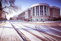 Trevecca Snow Days / Winter photos from 2013-2014 at Trevecca University in Nashville, Tennessee. / by Trevecca Nazarene University