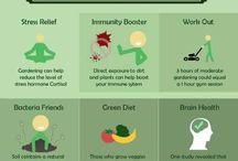 OT gardening benefits and adaptations