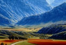 Sud Africa / by Barbara Vender