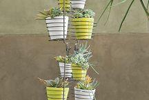 Future Shop Ideas...Garden Products