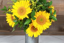 Shop Sun.Flowers!