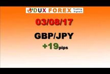 Accurate Forex Signals - Daily Forex Profits Performance 03/08/17 - Dux Forex