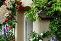 Cute cottages xx