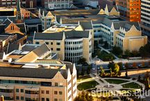 University of St. Thomas Minneapolis Campus Showcase / Where location meets innovation.