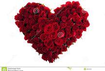 εικονες με τριανταφυλλα