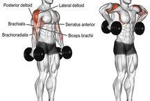 Power Training - Súlyzós edzés