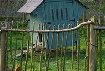 Garden - Backyard Poultry