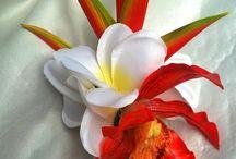 tocados hawaiano