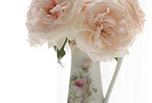 My Roses....