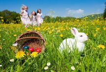 Happy Easter / Spring 2013 / From our family to yours, we want to wish all of you a very Happy Easter 2013! We love you all!