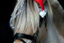#ponnynkavat