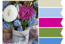 Color Palettes / Colorways and inspiration for paintings and decor