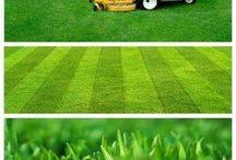 Lawn care / by Leann Hardie
