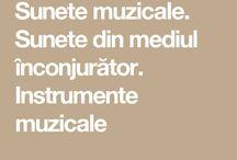 Muzică și mișcare / Cântece pentru copii