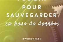 Blog : Wordpress