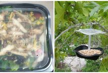DIY Bird Feeder #chickfilamomsDIY / Here is a great idea on how to upcycle your salad container from Chick-Fil-A. Perfect for year round.  #chickfilamomsDIY