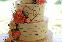 My Fairytale:: Cake / by Megan Ruetsch
