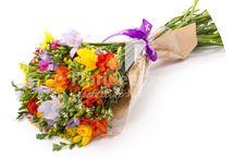 Flori de primavara, flori 1-8 martie