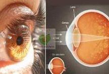 Göz tedavisi
