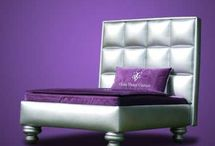 Luxury Pet Beds / by PlushBeds.com