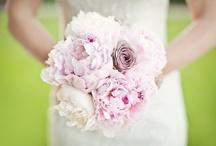 Pink is perfect / by Blush Floral-Design
