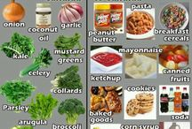 Candida Info & Recipes