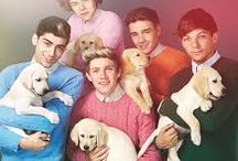 one direction / ♥ one direction ♥