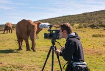 World's first 3D Wildlife Film School , South Africa / Do you dream of being the next David Attenborough? Would you like to learn how to become a professional wildlife filmmaker?