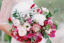 Roses // Pinks