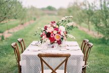 Wondrous Weddings / Tips, Tricks, Ideas, and Action Plans to Make Your Dream Wedding Happen!