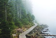See the world / Places I want to see, random paths in forests or big landmarks.