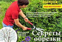 Журналы по саду