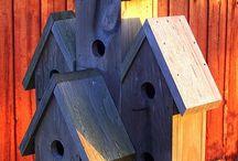 Bird house stuff
