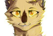 -Cats Warriors-